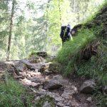 Escursione lago di Carezza