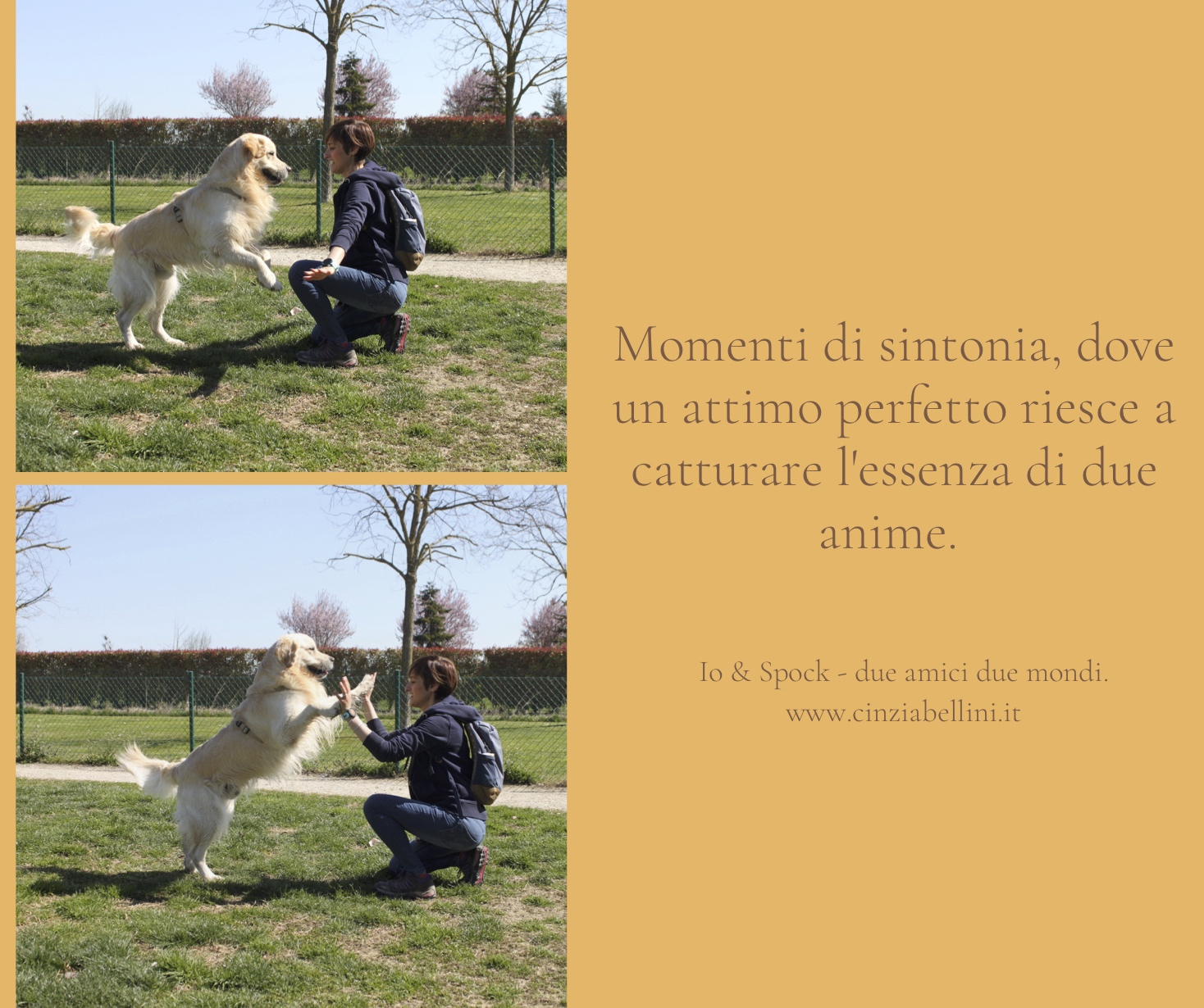 attimo perfetto; Cinzia Bellini