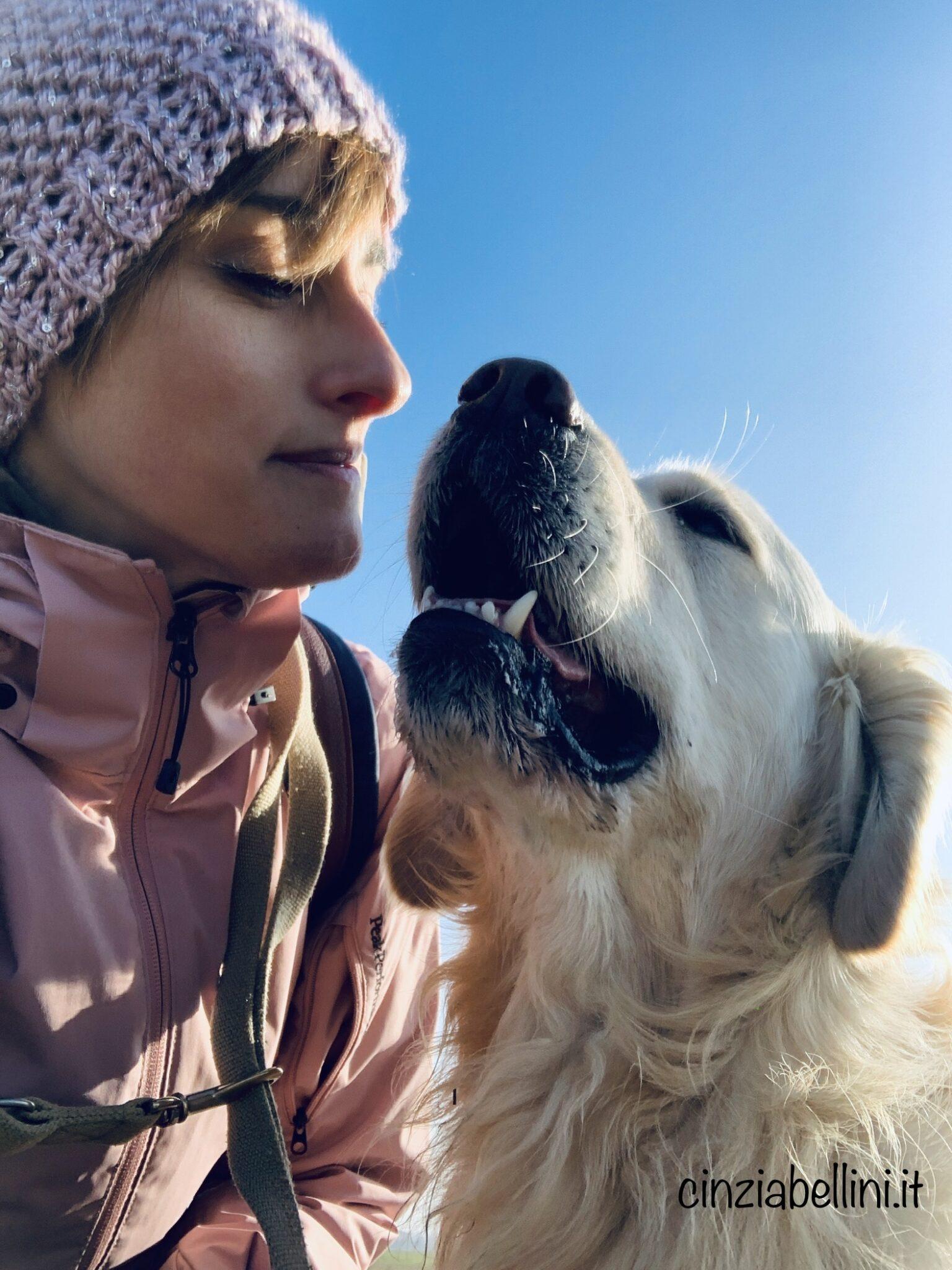 Il cane: 10 cose da NON fare